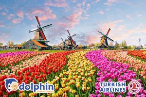 Tour du lịch Châu Âu 7 nước: Pháp - Bỉ - Hà Lan - Đức - Thụy Sỹ - Ý - Vatican 15N14Đ bay hàng không 4* Turkish Airlines