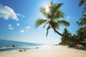 [Hà Nội] Du lịch Đảo Ngọc Phú Quốc 4N3Đ: Huyền thoại biển xanh KS Vinpearl bay HK Bamboo Airways