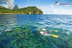[Hà Nội] Du lịch Đà Lạt - Nha Trang 5N4Đ bay HK Bamboo Airways