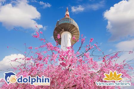 Tour du lịch Hàn Quốc mùa hoa anh đào 2019: Seoul - Everland - Nami - Yeouido 5N4Đ Khách sạn 5* Quốc tế - Vietnam Airlines KH từ Hà Nội