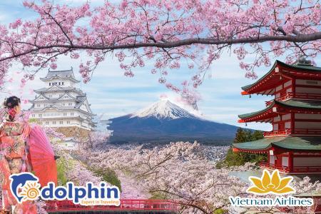 Du lịch Nhật Bản mùa hoa anh đào 2019: OSAKA - KYOTO - FUJI - TOKYO 6N5Đ bay Vietnam Airlines KH từ Hà Nội