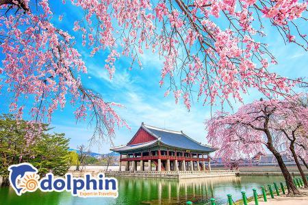 Du lịch Hàn Quốc 2019: Seoul - Nami - Everland - Yeouido - Du thuyền sông Hàn 5N4Đ bay hàng không Hàn Quốc KH từ Hà Nội