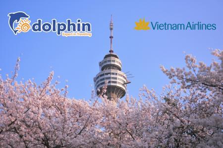 [Hà Nội] [Mùa Xuân] Du lịch Hàn Quốc Cao Cấp: Seoul - Nami - Everland - Công viên Yeouido 5N4Đ Khách sạn 5* Quốc tế bay sáng Vietnam Airlines