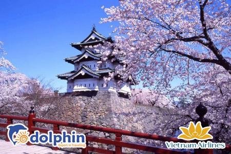 [Hà Nội] Du lịch Nhật Bản mùa hoa anh đào 2020