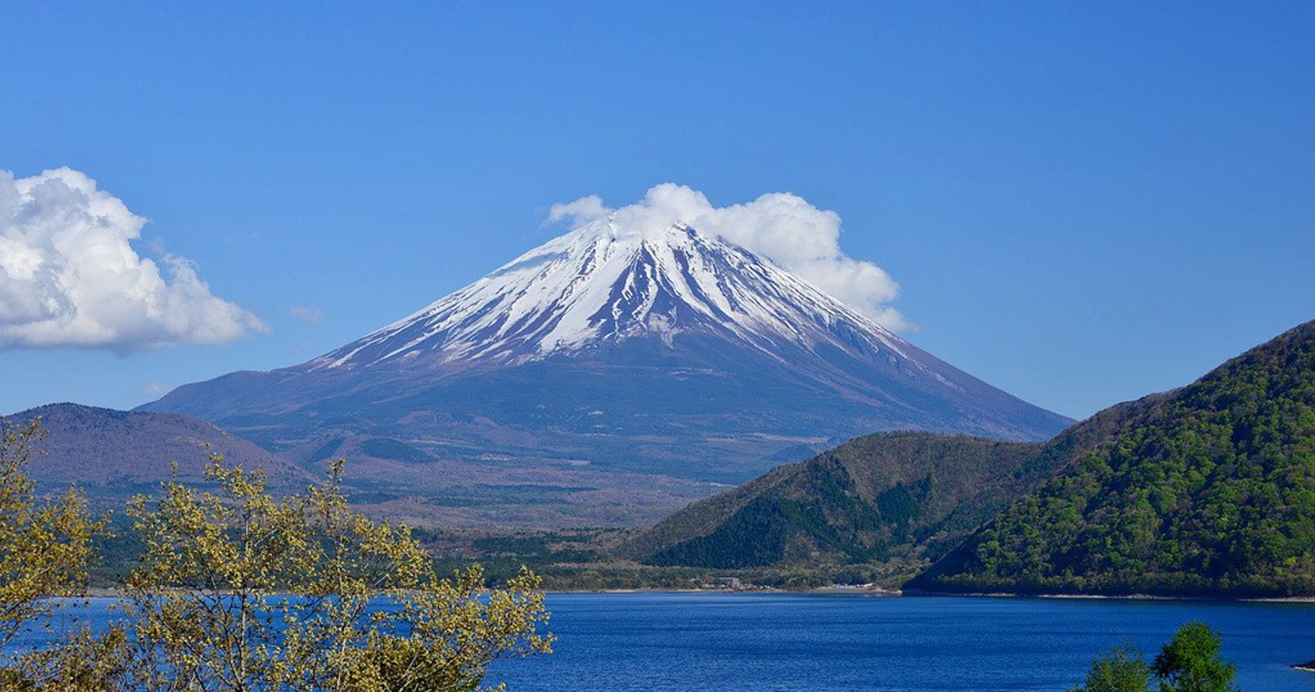 Du lịch Nhật Bản 2019: Haneda – Yamanashi – Tokyo 4N4Đ bay Japan Airlines KH từ HCM